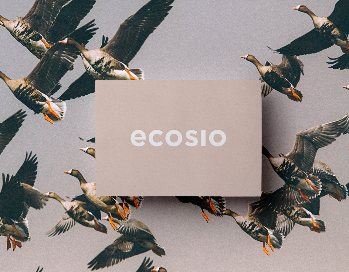 Ecosio – Corporate Design